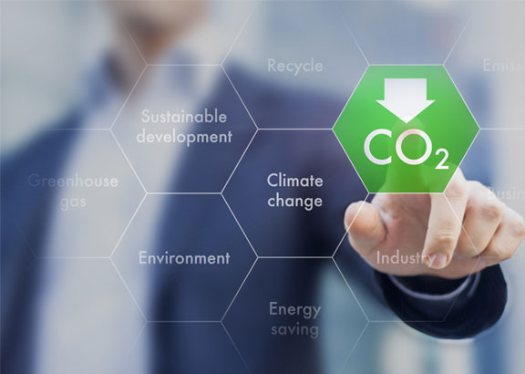 Chamber Low Carbon Grant